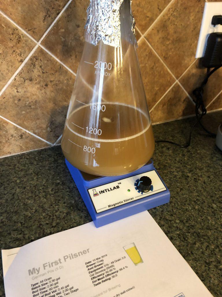 lager yeast starter