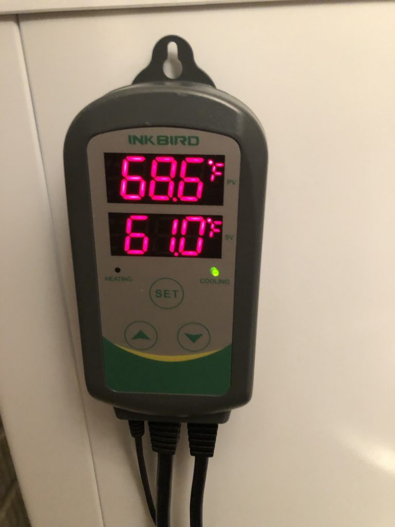 American lager yeast lack of temperature control